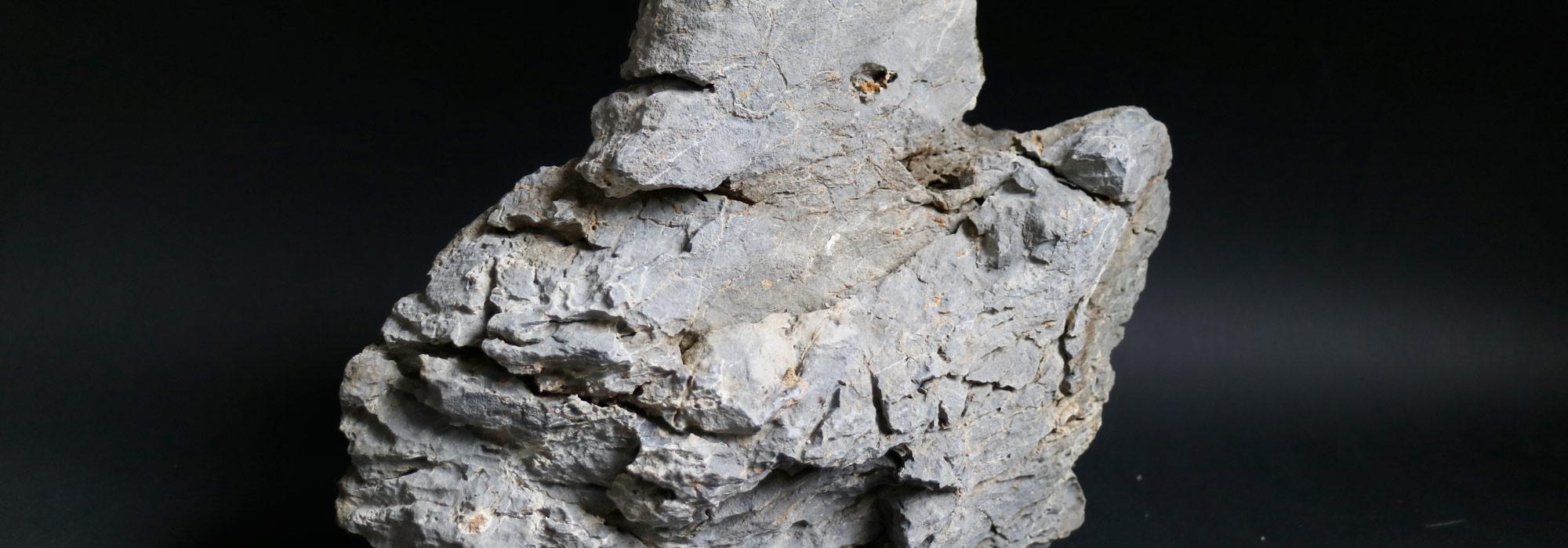 7b740f42b72 Seiryu steen - Mooi grijs is niet lelijk - Aquascapen.nl