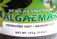 algaemax