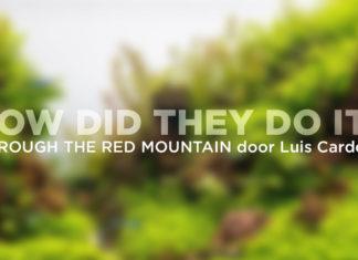 Through the Red Mountain - Luis Cardoso
