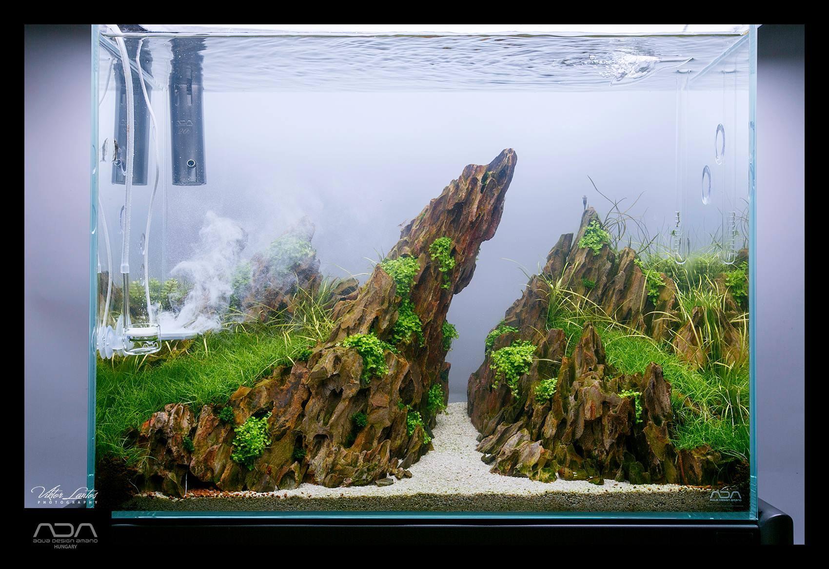 Green Aqua - Eweni