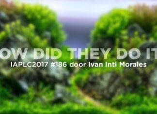 IAPLC2017 #186