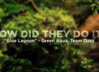 Green Aqua - Blue Lagoon