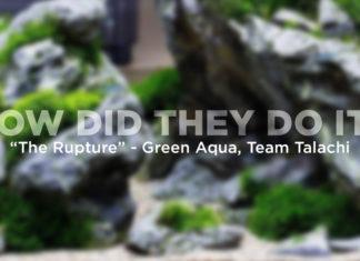 The Rupture - Green Aqua