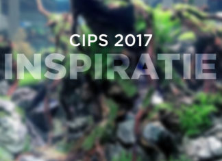 CIPS 2017